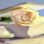 Bledá Růže – Kapitola 1